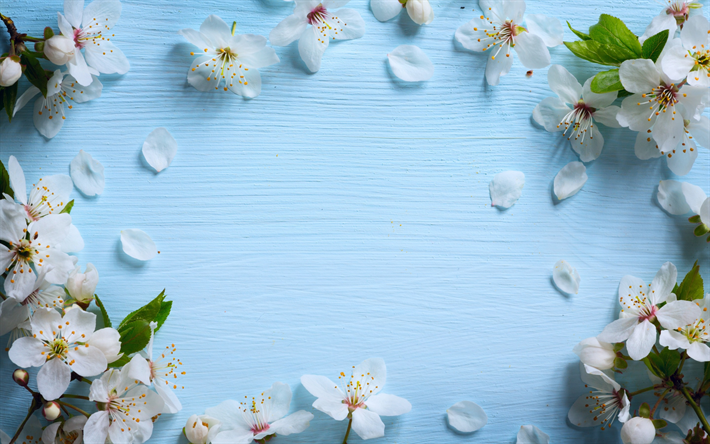 thumb2-apple-blossom-spring-blue-wood-background-bloom-spring-flowers